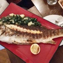 riba-cela spremljena
