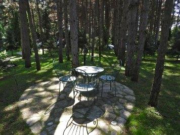 stolići u šumi