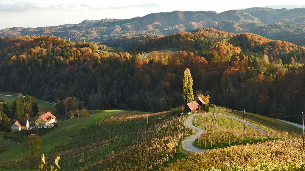 Kungota & Weinstrasse & Buschenschank - zvuči čudno, al je izlet za uživanje u pogledu, prirodi i po nekom vincu