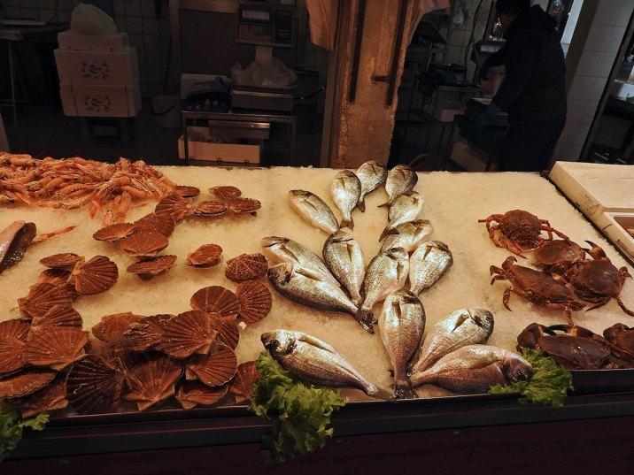 ribe-skoljke-skampi-rakovi
