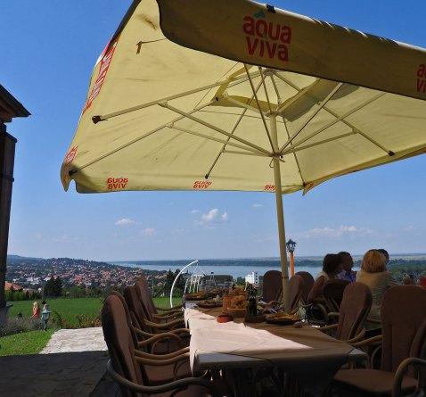 restoran Vinogradi Grocka pogled
