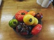 paradajz svih boja.