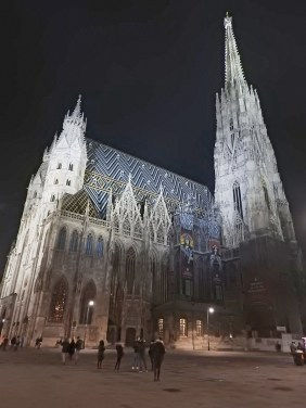 Vienna cathedral by night