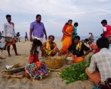 Chennai-01557