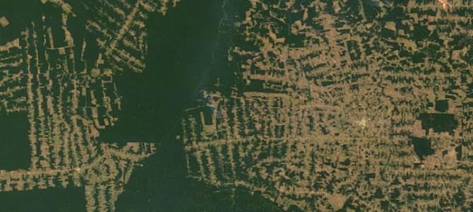 EU måste kräva skydd av Amazonas i handelsavtal