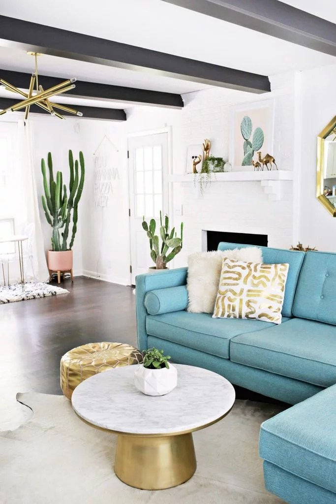 Pictures Of House Plant Cactus POPSUGAR Home