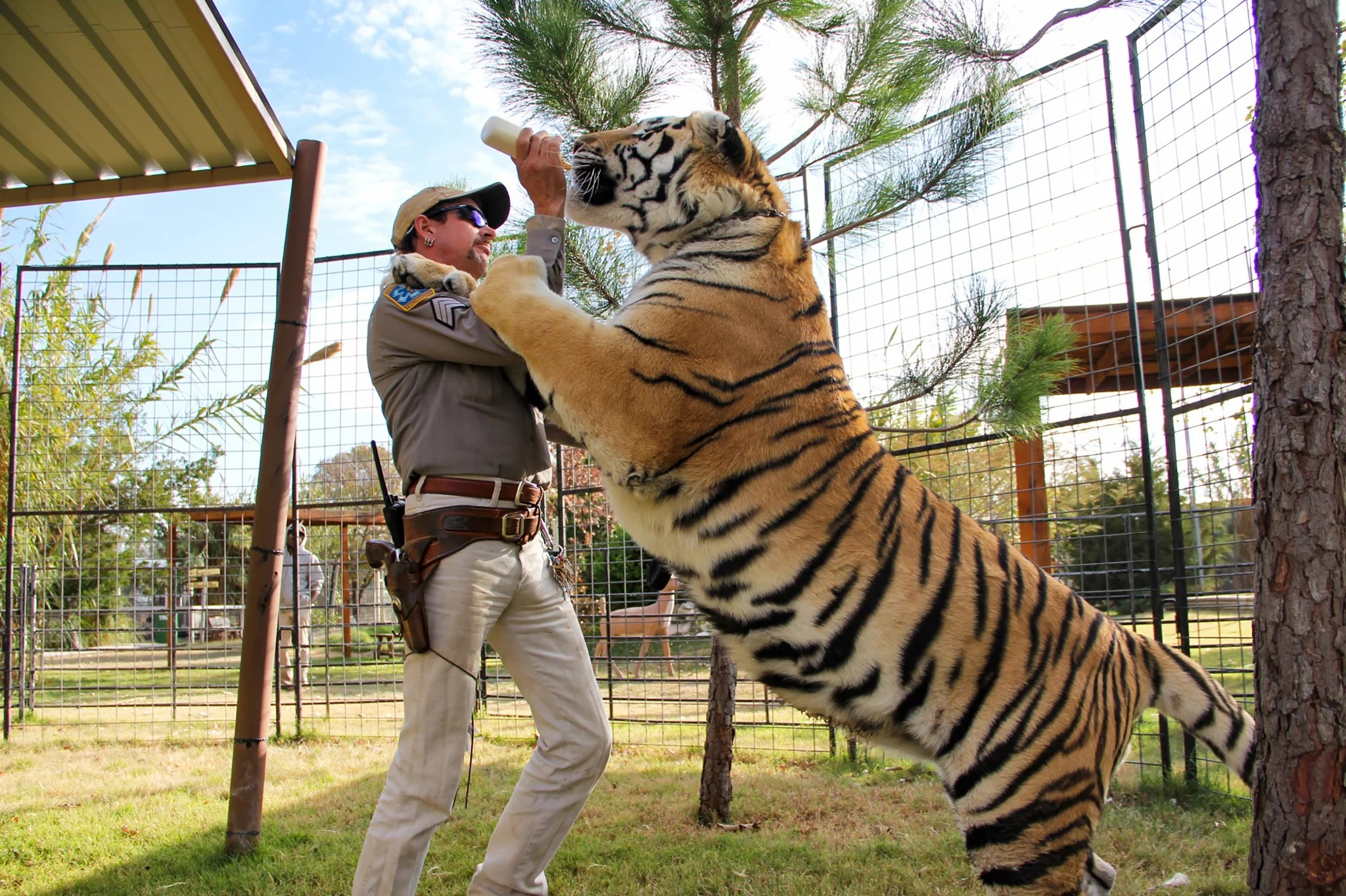 TIGER KING, Joe Exotic, (Season 1, ep. 101, released March 20, 2020). photo: Netflix / courtesy Everett Collection