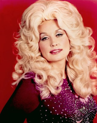 Image result for dolly parton big wig