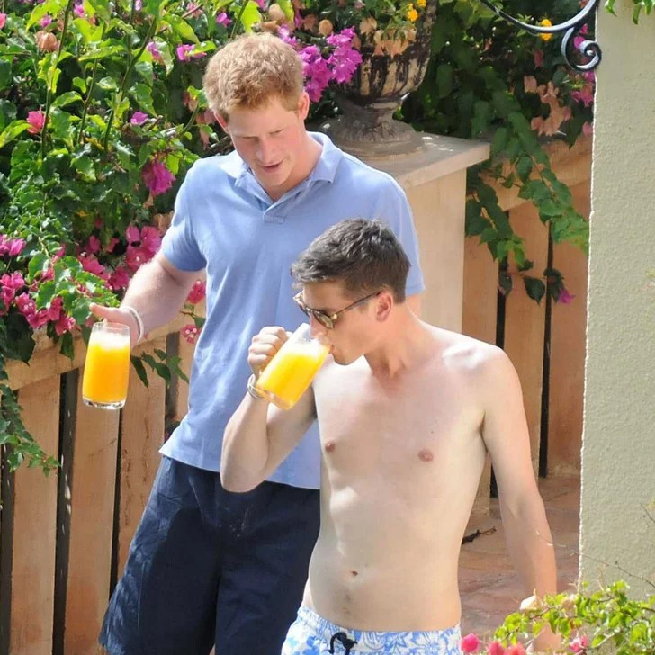 Prince Harry Shirtless Pictures With Bikini Girl In