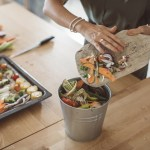 Best Composting Bins To Buy In 2020 According To Experts
