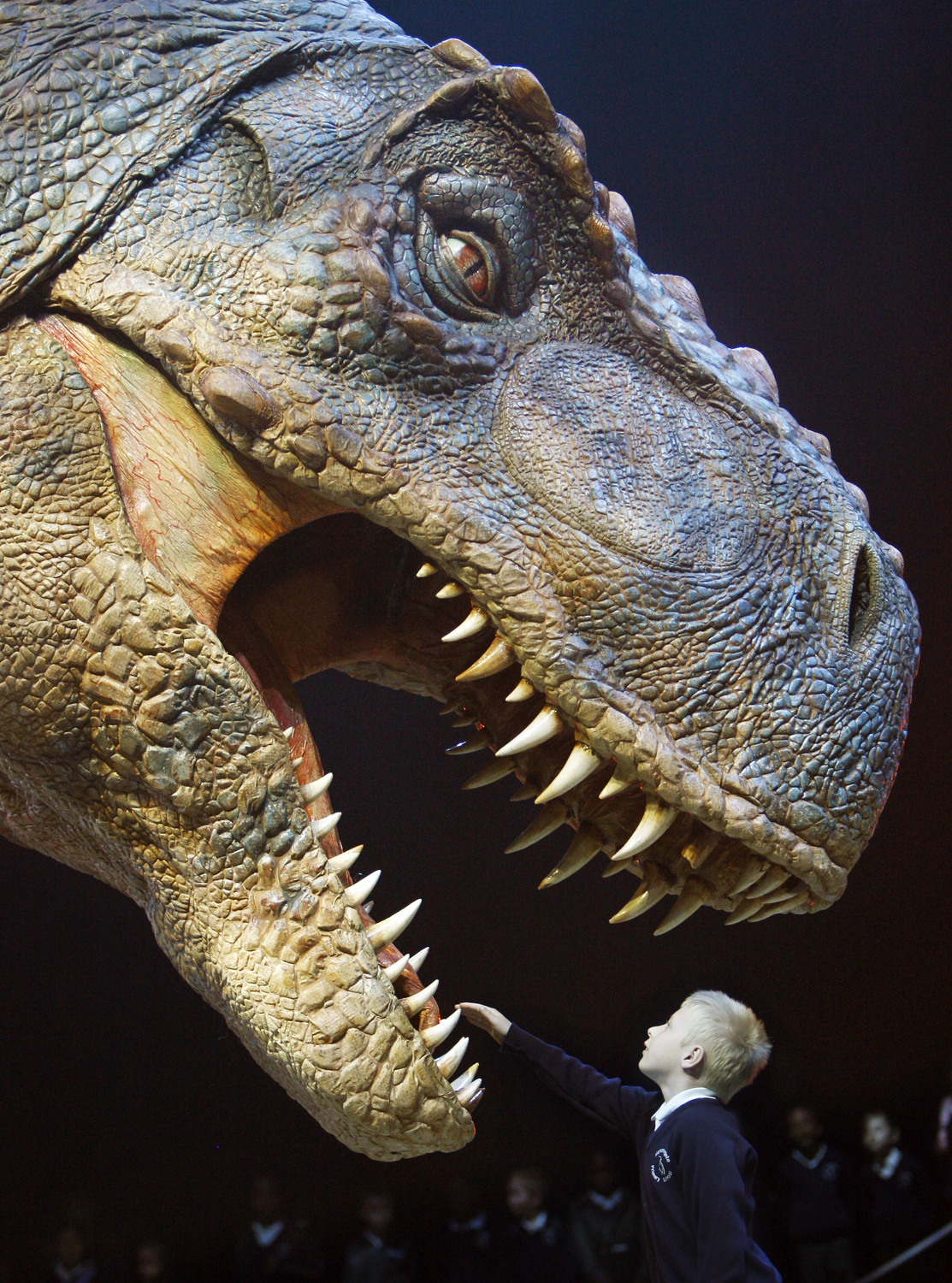 T Rex Burger Now Extinct From Canadian Wendy S