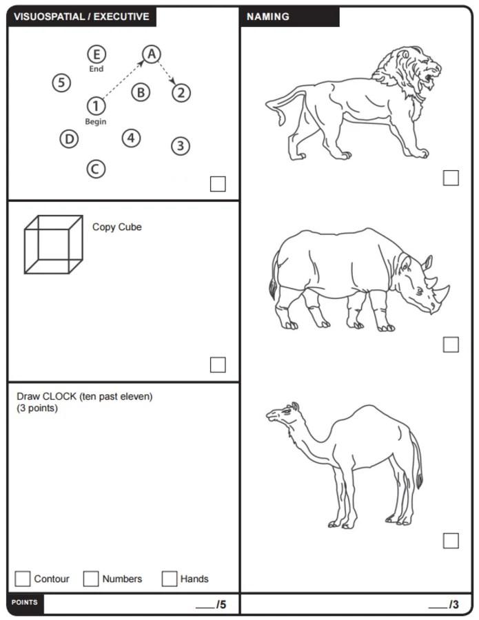Image: Moca Test