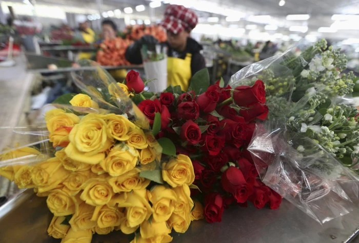 Cheapism Best Valentines Day Flower Delivery