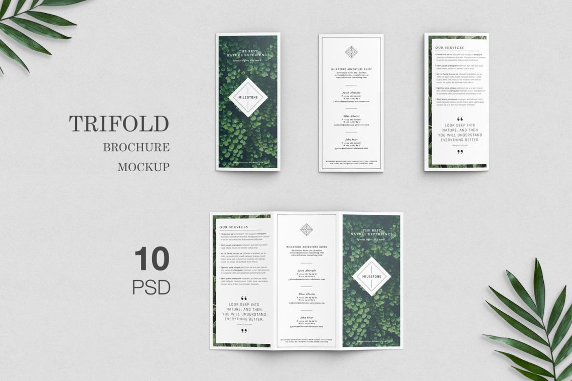 Download 3 Fold Mockup Psd Free Download Yellowimages