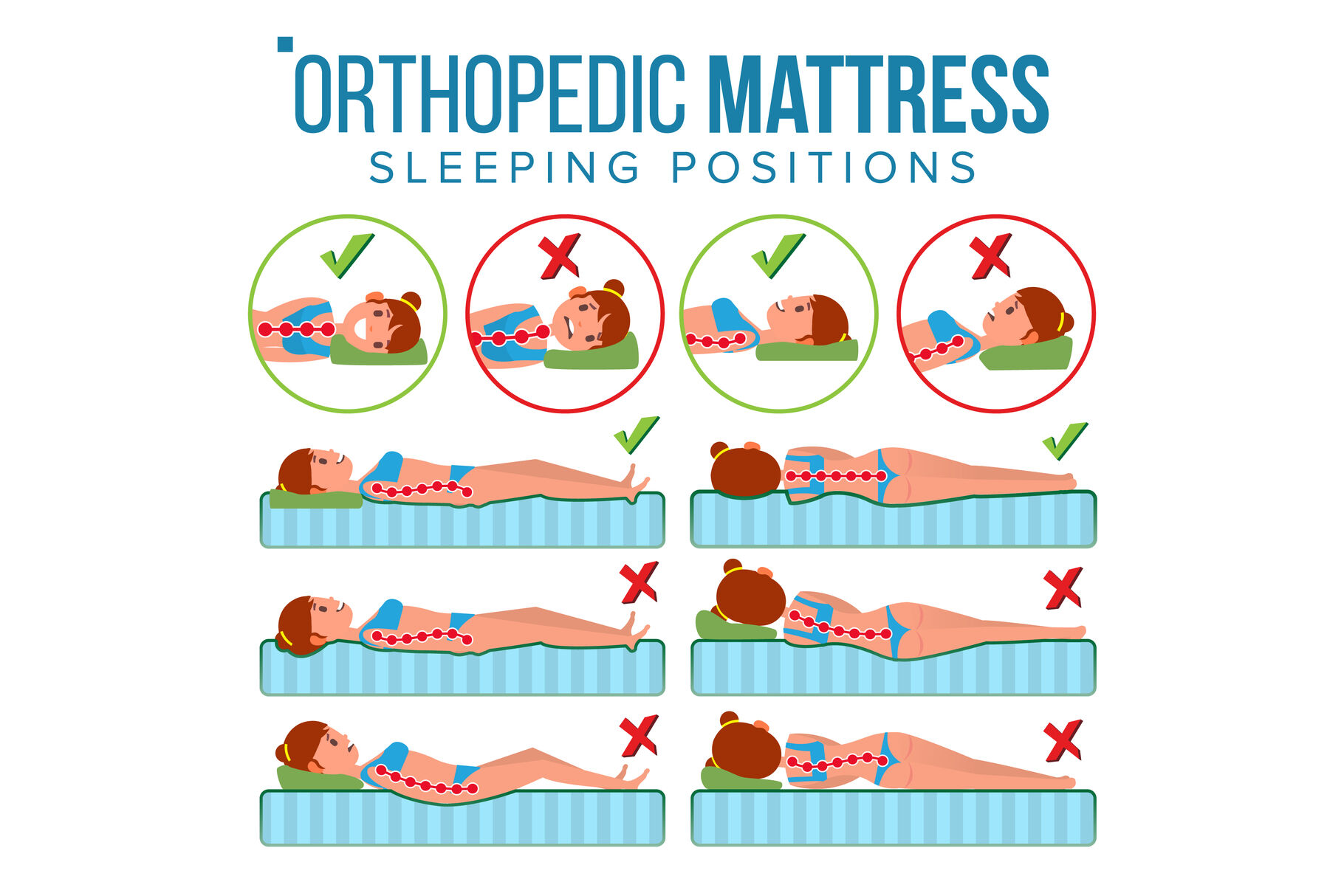 orthopedic mattress vector curvature