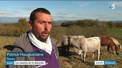 aude les cloches de ses vaches font trop de bruit l eleveur convoque par la gendarmerie