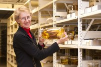 Janet Voight in her natural habitat, a collections room at the Field Museum