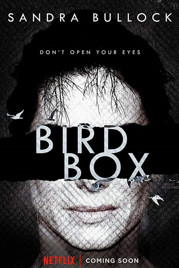 Second Trailer For Netflix S Survival Film Bird Box With Sandra