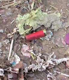 Empty bullet shell