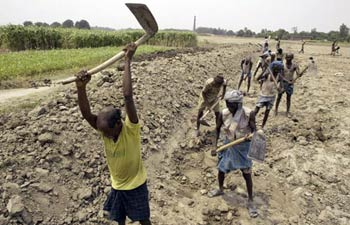 Farmers ploughing land