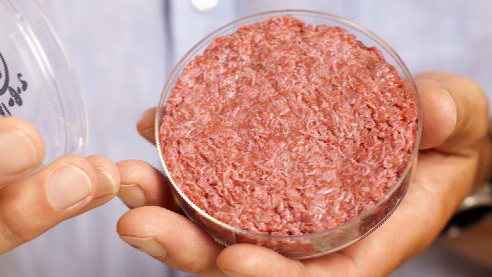 Image result for lab grown meat