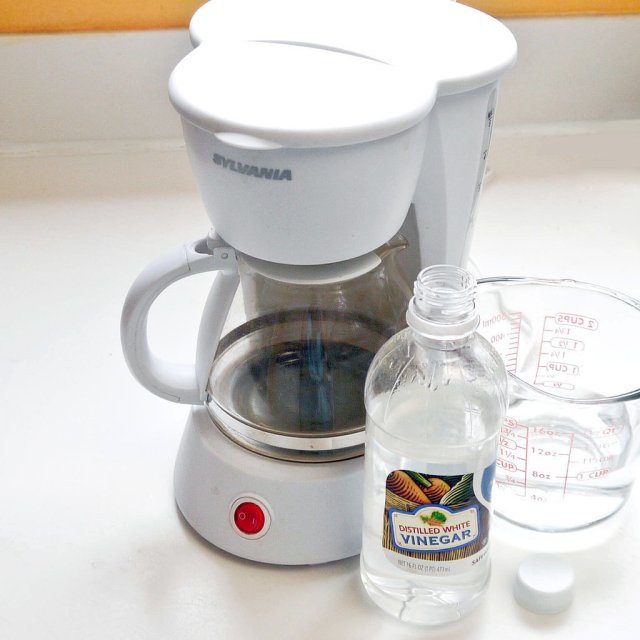 How to Clean a Coffee Pot  POPSUGAR Smart Living
