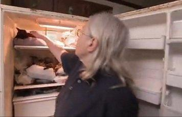 Hoarders Horror Woman Has Nearly 100 Dead Cats In