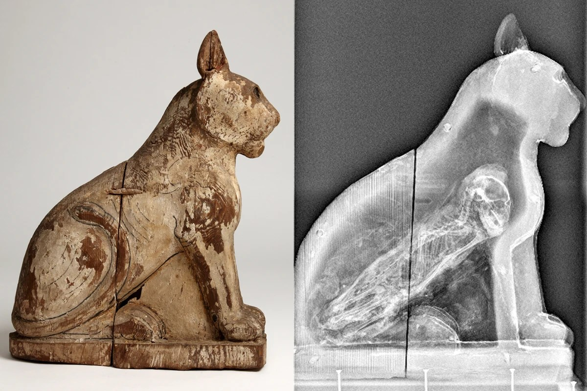 Secret Of Ancient Egyptian Animal Mummies Revealed