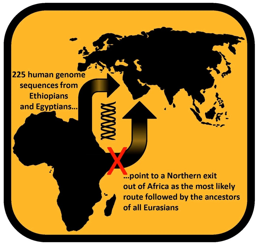 Modern Humans Trekked Out Of Africa Via Egypt Dna Study