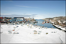 The harbor at Ilulissat, Greenland, 170 miles north of the Arctic Circle, is no longer icebound in the winter, so fishermen can use boats all year.