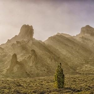 Av naturen formad, ...