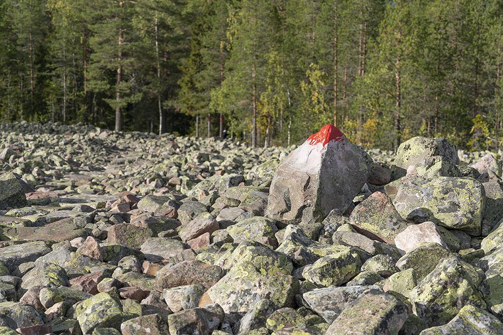 En kantig miljö, uppe på berget -inte helt lätt.