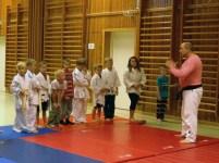 Judo bild2