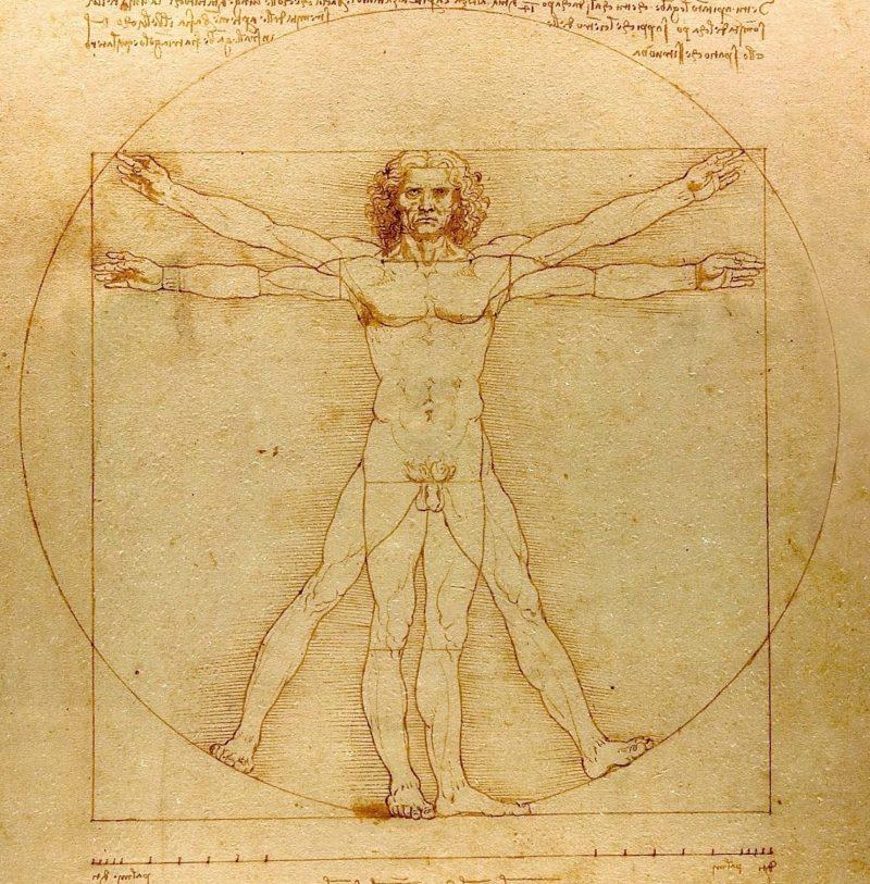 https://en.wikipedia.org/wiki/Vitruvian_Man#/media/File:Da_Vinci_Vitruve_Luc_Viatour.jpg