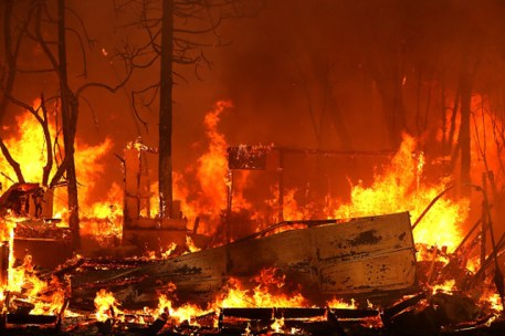 Image result for california camp fire where to donate