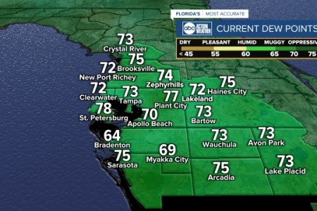 Tampa Bay  Florida Radar Maps   abcactionnews com Local Dew Point