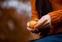 Media Bakery A woman peeling a clementine, close up