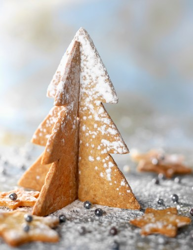Media Bakery ID: SFD0020506 Ginger shortbread Christmas tree