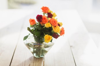 Media Bakery ID: CAA0010831 Close up of multicolor roses in vase on table