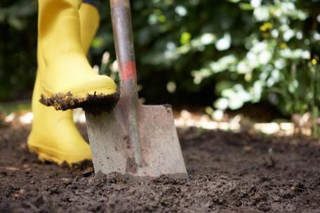 Media Bakery ID: MKB0084791 Person digging in garden