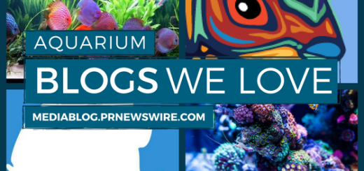 Aquarium Blogs