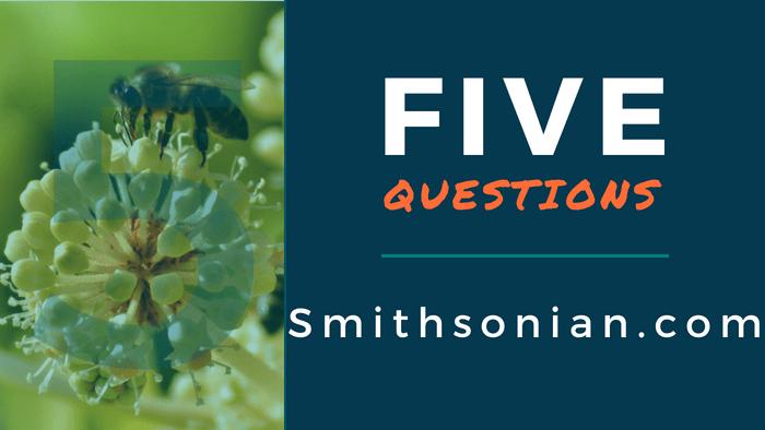 5 Questions Smithsonian.com