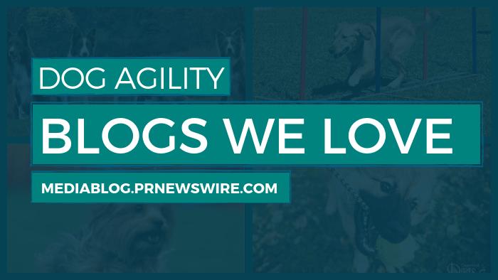 Dog Agility Blogs We Love - mediablog.prnewswire.com
