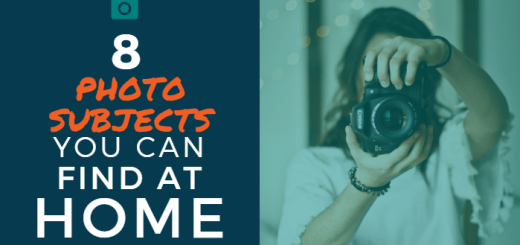 8 Photo Subjects You Can Find at Home
