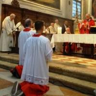 Esaltazione della Santa Croce, Araldi in Italia, Venezia-017