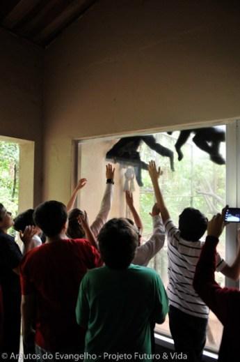 Zooparque2015-8