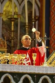 Bênção para OI E OII na basílica e Missa.Paramento verdeBasílica do ThaborThiago Tamura Nogueira