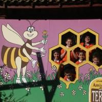 Ida ao apiário