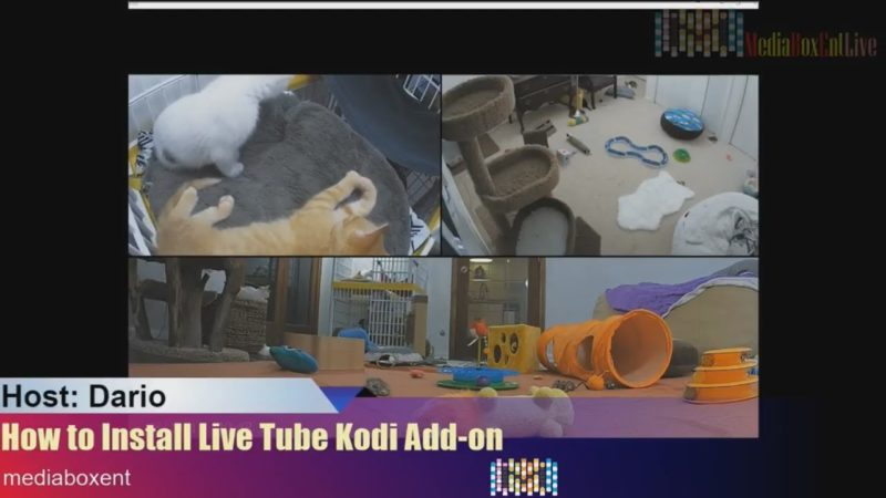 Kodi add on for youtube live