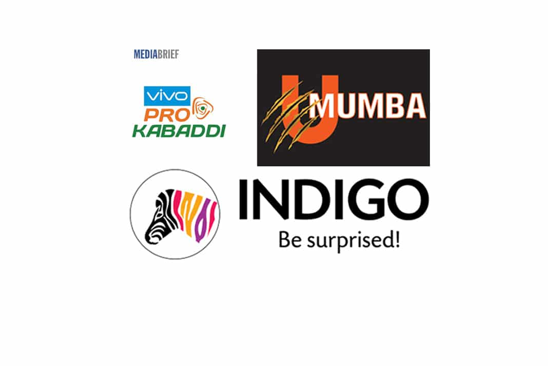 Indigo Paints to spend Rs 200 crore on ad campaigns in 2-3 yrs; sponsors U Mumba at Vivo Pro Kabaddi League